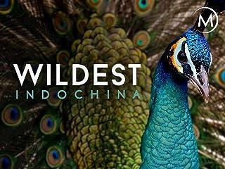 Wildest: Indochina