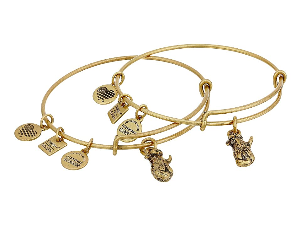 Alex and Ani Charity by Design Side by Side Set of 2 Expandable Wire Bangles (Shiny Gold) Bracelet