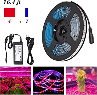 Espeedy Tira LED de Luz RGB 5M, LED franja planta luz crecer luces 5050 SMD