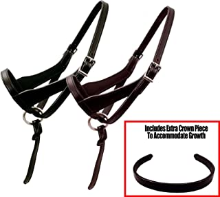 Derby Originals Paris Tack Double Layered Leather Grow with Me Adjustable Horse Foal Halter with Extra Crown Piece