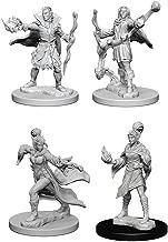 Pathfinder Battles Deep Cuts Miniatures Bundle: Elf Male Sorcerer & Elf Female Sorcerer