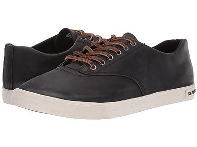 SeaVees Hermosa Sneaker Wintertide (Black) Men