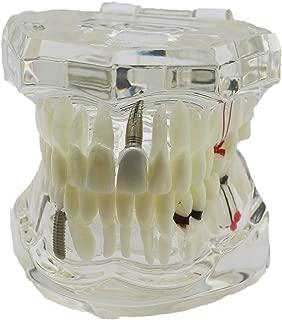 Best dental clinic 1 Reviews