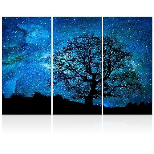 Nature Painting Amazon Com