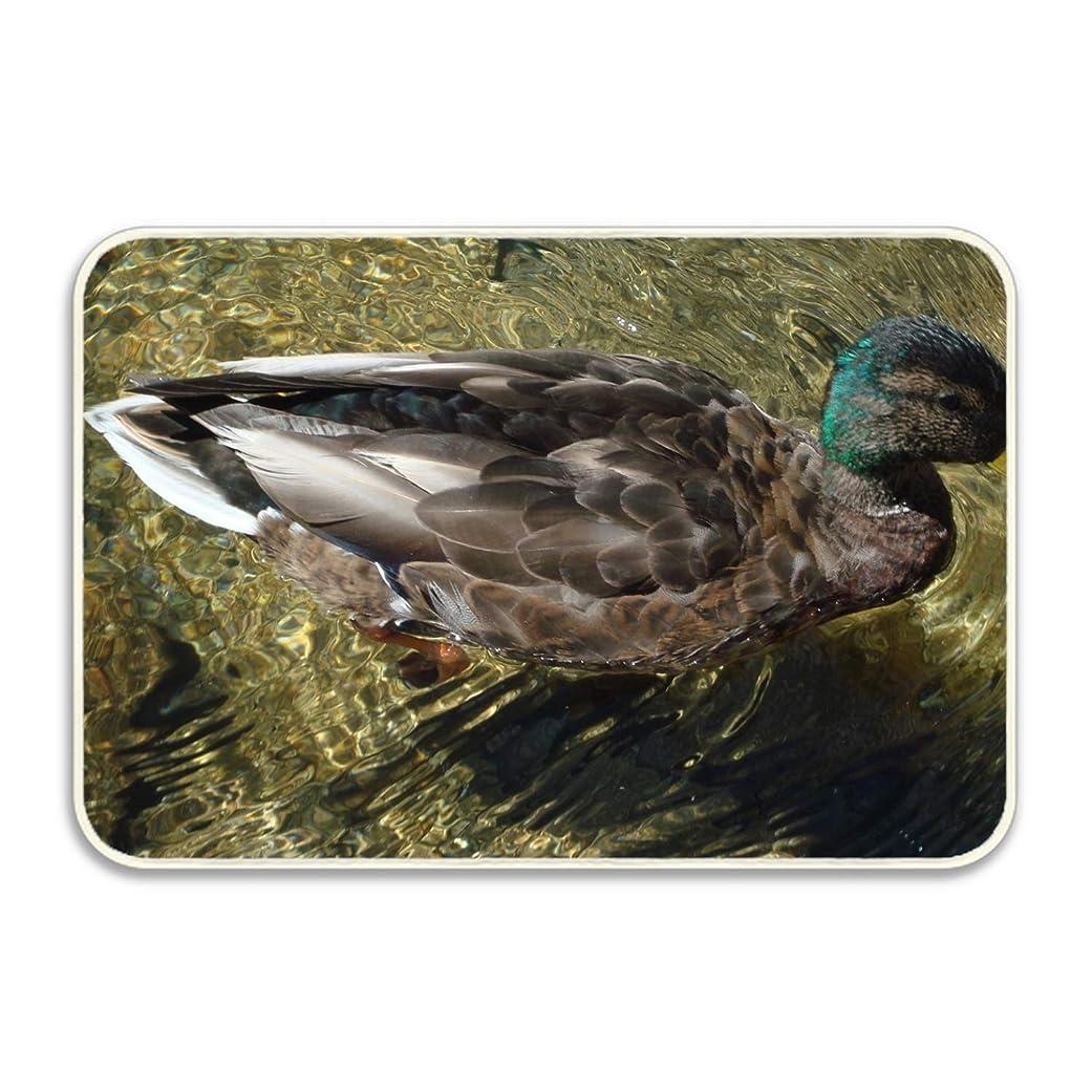 以前は種をまく黄ばむ3Dプリント染め バスルームカーペット ドアマット ト シャワーマット 吸収性キッチンドアカーペット 動物のアヒルの鳥