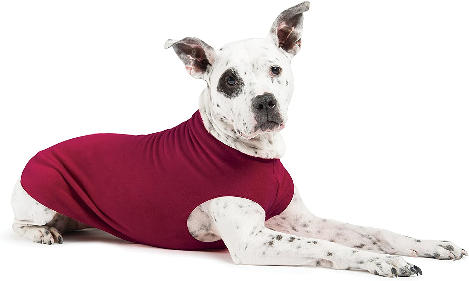 Gold Paw Stretch Fleece Dog Genuine Free Shipping Clothes 2021 spring and summer new – Soft Coat Warm
