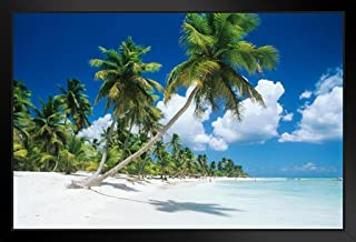 Palm Trees Beach Saona Island Dominican Republic Photo Black Wood Framed Art Poster 20x14