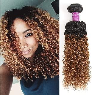 Best brazilian ombre human hair stylemix Reviews