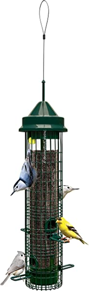 Squirrel Buster Classic Squirrel Proof Bird Feeder W 4 Feeding Ports 2 4 Pound Seed Capacity