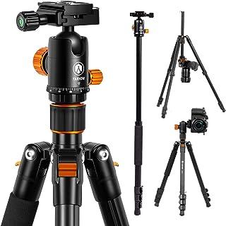 TARION Q550 Treppiede professionale con testa fluida a 360°, visione panoramica completa con piastra a sgancio rapido, per...