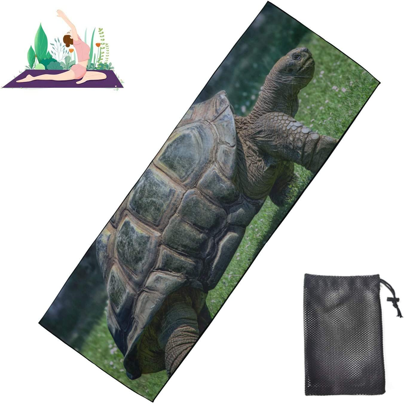 Huqalh Gym Yoga Max 47% OFF Mat Giant Turtles Mic Max 70% OFF Hot Towel Land On
