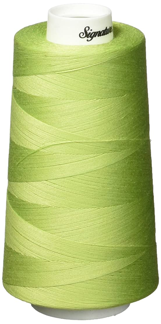 Signature Cotton Quilting Thread, 3000 yd, Solids Spring Bud