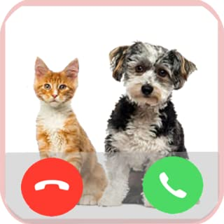 Fake Call from Pet Prank