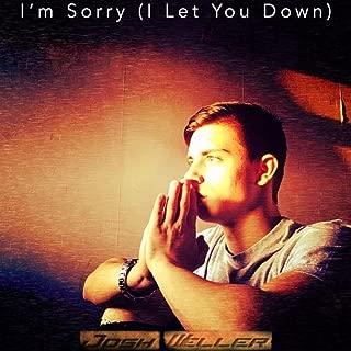 I'm Sorry (I Let You Down) [Explicit]
