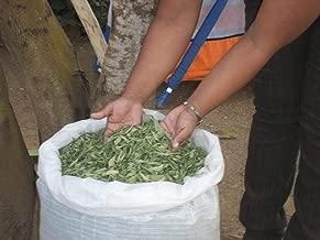Hojas de Stevia Entera Natural 100% Pura Ecologica y Organica Seleccionada de Calidad Premium 1 Kg.