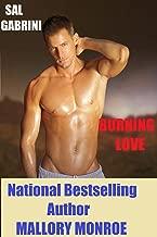Sal Gabrini: Burning Love (Sal Gabrini Series Book 8)