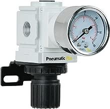 PneumaticPlus PPR2-N02BG-4 Miniature Air Pressure Regulator 1/4