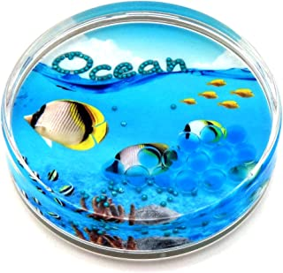 Canplow Sea Life Liquid filled Acrylic Paperweight, Tropical Fish, Bubble,Ocean,Colorful