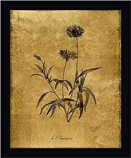 Gold Sketch Botanical I by Kelly Donovan 14