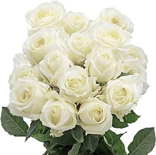 GlobalRose 1 Dozen White Roses - Wondrous Charming!