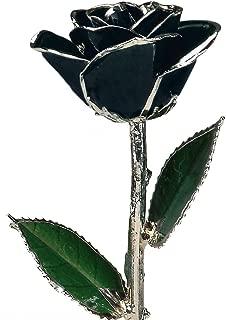 black rose in dome