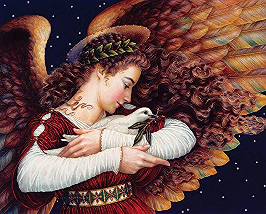 DIY Handwork Store 5D DIY Full Square Velvet Canvas Diamond Painting Kits Art Crafts Gift Angel of Peace with Dove Embroidery Mosaic Cross Stitch Wall Decor(19.7