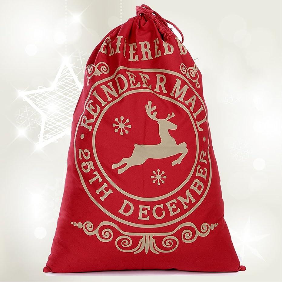 多様性止まる合体Kindness クリスマス 飾り ギフトバッグ 特大 クリスマス プレゼント袋 祝日ギフト 巾着バッグ 大容量 収納 おしゃれ (レッド delivery)