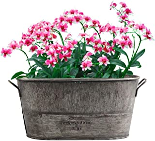 Lembeauty Retro Hierro Maceta de Flores para Interior y Exterior de Mesa jarrón Plantas Grasas jarrón para Home Garden Decor (NO Incluido)