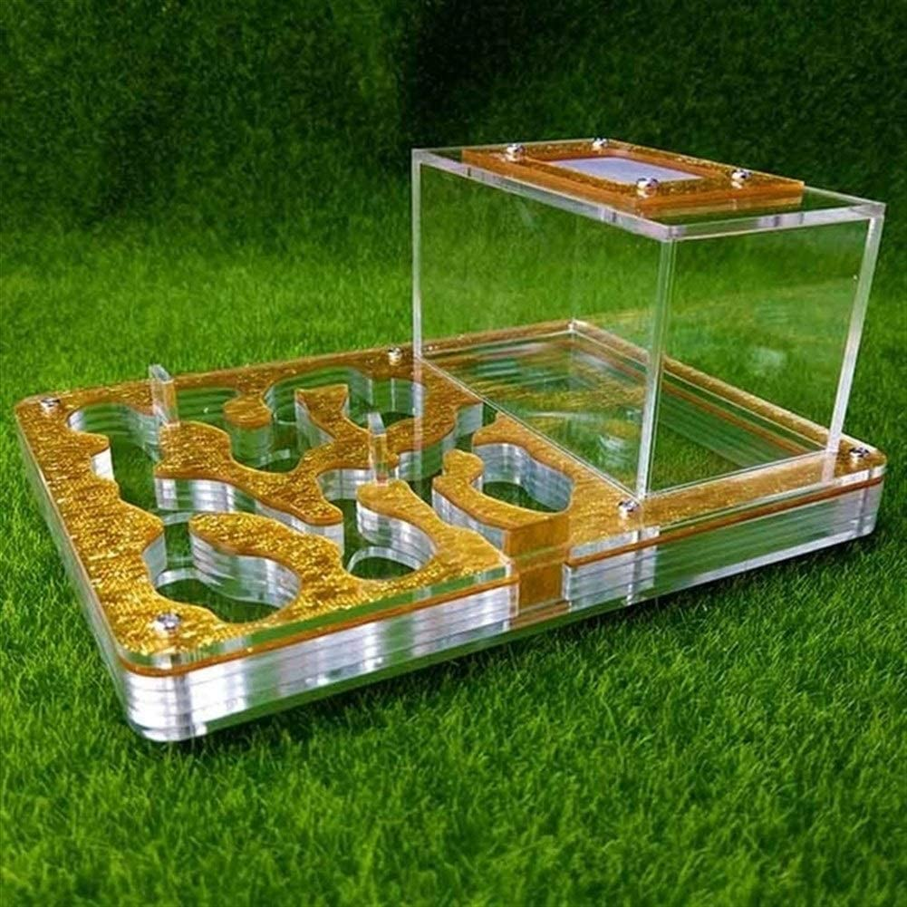Nologo New Acrylic Flat Ants Nesting Ant Farm Small Breeding Pets Terrarium Reptile Insect Supplies Gifts