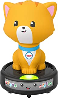Fisher-Price Laugh & Learn Crawl-After Cat on a Vac, juguete musical para bebé