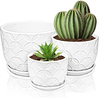 Yesland Ceramic Plant Pots - Circle Planters with Connected Saucer - Small to Medium Size Garden Flower Pots for Succuelnt...