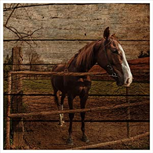 Farmhouse Rustic Wall Art for Bedroom Home Bathroom Decor for the Home Country Horse Pictures Artwork for Walls Kitchen Wall Decor Modern Prints Wood Grain Canvas NO Framed Animal Wall Art Size 34.5cmx34.5cmX1