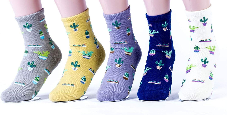 New Plant Cactus Flower Pot Pattern Women/Girl Socks Comfortable Lovely Cute Socks Cotton Casual Socks