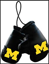 قفازات ملاكمة صغيرة للجنسين من Fremont Die NCAA مقاس 4 بوصات