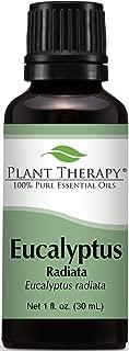 Plant Therapy Eucalyptus Radiata Essential Oil 30 mL (1 oz) 100% Pure, Undiluted, Therapeutic Grade