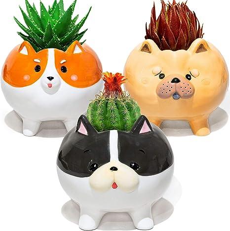 Puppy Planters