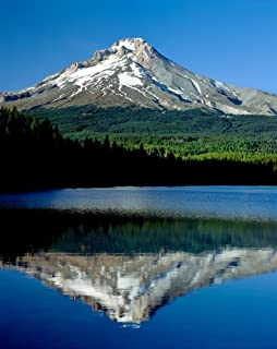 Reflection of mountain range in a lake Mt Hood Trillium Lake Mt Hood National Forest Oregon USA Poster Print by Panoramic Images (14 x 11)