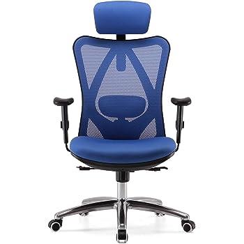 SIHOO Sedia da Ufficio ergonomica, poggiatesta Regolabile e Supporto Lombare con Schienale Alto (Blu)
