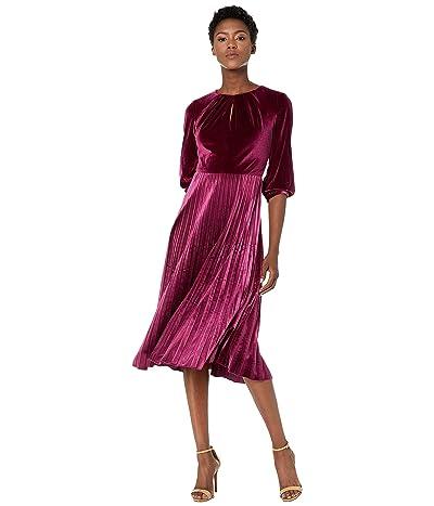 Maggy London Solid Velvet Pleated Dress (Port) Women