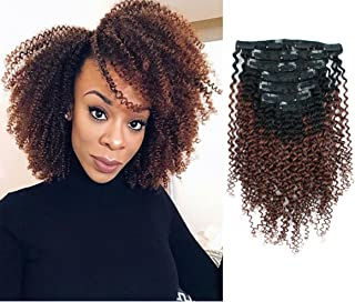 Sassina 3C 4A Ombre Kinky Curly Clip In Human Hair Extensions For African American Black Women Double Wefts Natural Black Fading to Auburn 120 Grams 7 Pieces Per Bundle with 17 Clips KC TN33 20 Inch