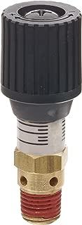 Control Devices CR Series Brass Pressure Relief Valve, 0-100 psi Adjustable Pressure Range, 1/4