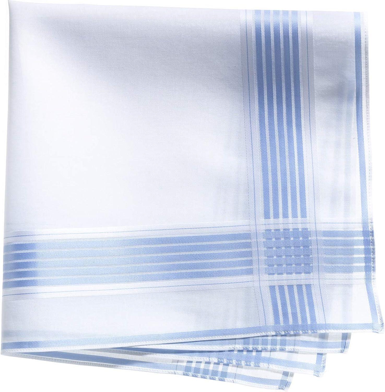 Lehner Switzerland Men's Fancy Woven White Blue Stripe Satin Band Cotton Handkerchief