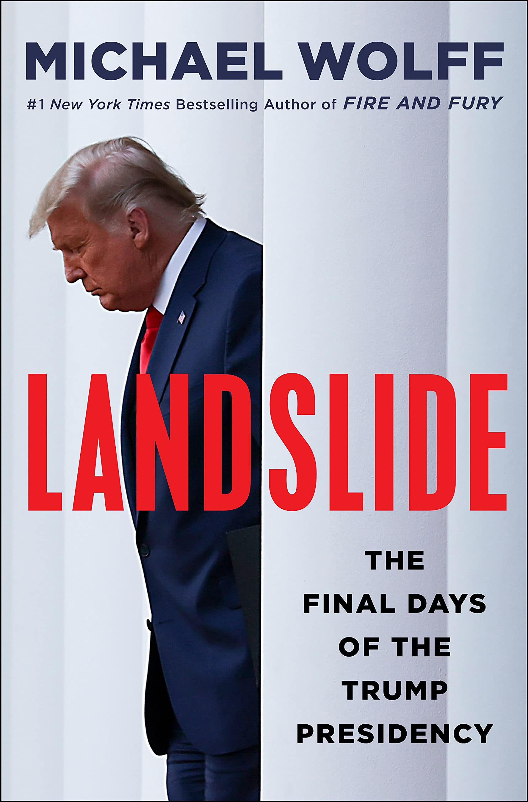 Cover image of Landslide by Michael Wolff