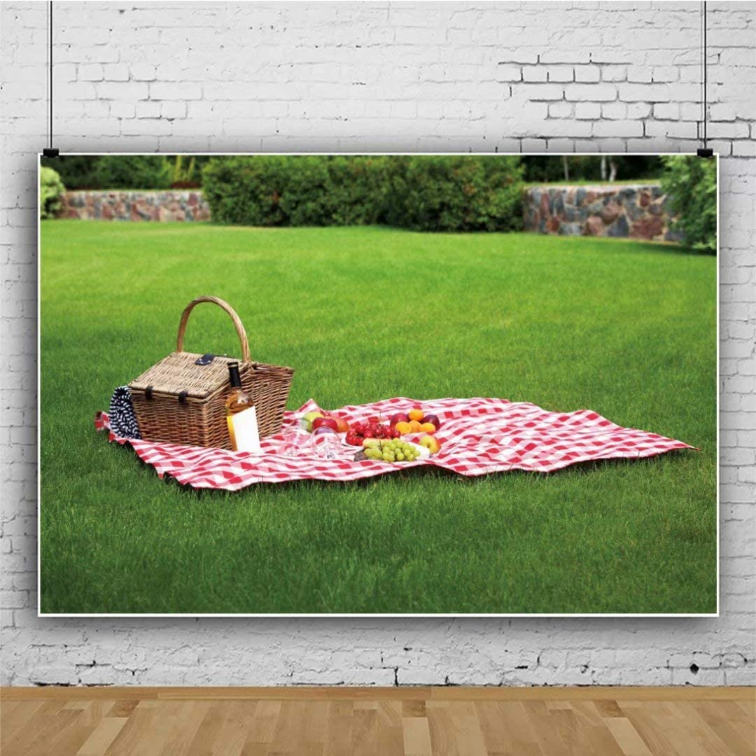DaShan 14x10ft Outdoor Picnic Backdrop Picnic Natural Scenery Photography Background Green Grassland Picnic Blanket Family Event Spring Park Picnic Party Banner Kids Adults Photo Studio Props