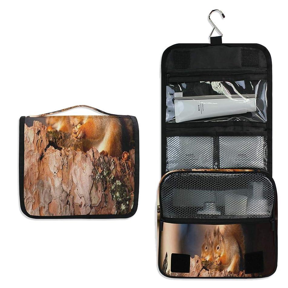 Hanging Toiletry Bag Squirrel Search Food Waterproof Wash Bag Makeup Organizer for Bathroom Men Women