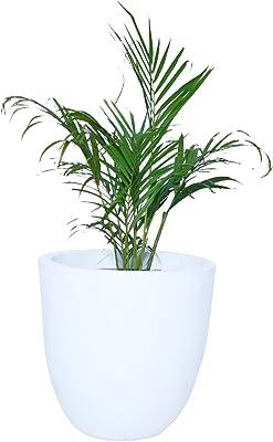 Gardenix Decor Fiber Reinforced Plastic White Pots for Indoor Plants Planters FRP Planter Gamla for Outdoor Garden Pot-(Width:10 Inch, Height:12 inch)-Pack of: 1 Pot