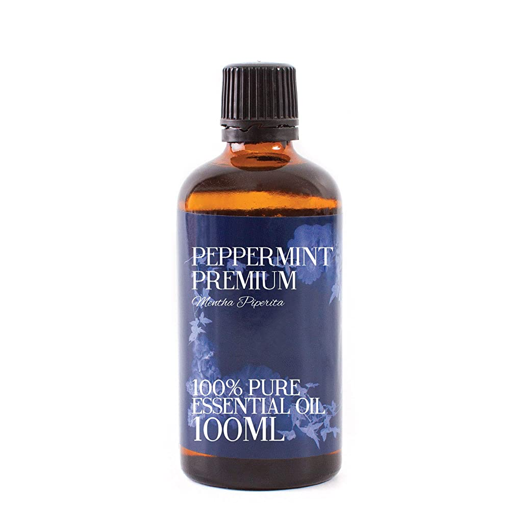 と遊ぶ独立した最大限Mystic Moments | Peppermint Premium Essential Oil - 100ml - 100% Pure