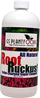 root magic mycorrhizae