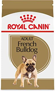 french bulldog brand