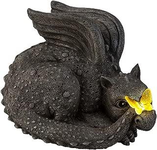 Best solar flare dragon Reviews
